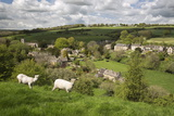 Naunton, Cotswolds, Gloucestershire, England, United Kingdom, Europe Fotoprint van Stuart Black