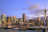 Auckland City and Harbour, Auckland, North Island, New Zealand, Pacific Photographic Print by Neil Farrin