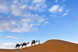 Berber Man Leading a Train of Camels over the Orange Sand Dunes of the Erg Chebbi Sand Sea Photographic Print by Lee Frost