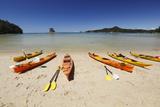 Kayaks on Beach, Torrent Bay, Abel Tasman National Park Photographic Print by Stuart Black