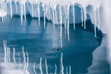 Icicles Mirrored in Calm Water from Ice Floating in the Neumayer Channel Near Wiencke Island Photographic Print by Michael Nolan