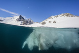 Above and Below View of Glacial Ice in Orne Harbor, Antarctica, Polar Regions Photographic Print by Michael Nolan
