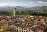 View over City to San Frediano from Atop Torre Guinigi, Lucca, Tuscany, Italy, Europe Stampa fotografica di Stuart Black