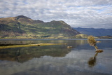 Reflection in Lake Wanaka, Wanaka, Otago, South Island, New Zealand, Pacific Photographic Print by Stuart Black