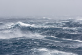 Gale Force Westerly Winds Build Large Waves in the Drake Passage, Antarctica, Polar Regions Reprodukcja zdjęcia autor Michael Nolan