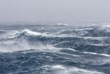 Gale Force Westerly Winds Build Large Waves in the Drake Passage, Antarctica, Polar Regions Fotografie-Druck von Michael Nolan