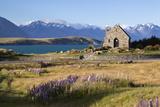 Church of the Good Shepherd, Lake Tekapo, Canterbury Region, South Island, New Zealand, Pacific Papier Photo par Stuart Black