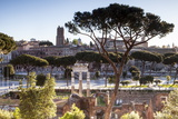 Part of the Imperial Forum (Foro Imperiali), Rome, Lazio, Italy, Europe Photographic Print by Julian Elliott