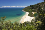 Sandfly Bay, Abel Tasman National Park, Nelson Region, South Island, New Zealand, Pacific Stampa fotografica di Stuart Black