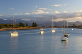 Yachts Anchored in Estuary, Mapua, Nelson Region, South Island, New Zealand, Pacific Photographic Print by Stuart Black