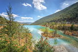 White Water River and Pine Trees, 25Km North of Lijiang., Yunnan, China, Asia Photographic Print by Andreas Brandl