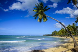 Casa Blanca Beach, Las Terrenas, Dominican Republic, West Indies, Caribbean, Central America Photographic Print by Michael Runkel