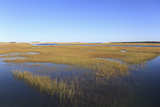 Salt Marsh, Sandwich, Cape Cod, Massachusetts, New England, United States of America, North America Photographic Print by Wendy Connett
