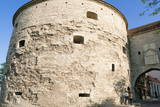 Fat Margaret Tower, Old City Walls of the Old Town of Tallinn, Estonia, Baltic States, Europe Photographic Print by Nico Tondini