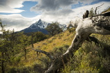 Torres Del Paine National Park, Patagonia, Chile, South America Photographic Print by Ben Pipe