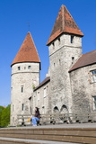 The Old City Walls of the Old Town of Tallinn, Estonia, Baltic States, Europe Photographic Print by Nico Tondini