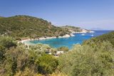 View from Hillside over Filiatro Bay, Near Vathy (Vathi), Ithaca (Ithaki) Photographic Print by Ruth Tomlinson