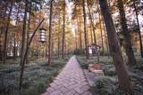 Forest Path with Bench and Lanterns in a West Lake Park, Hangzhou, Zhejiang, China, Asia Photographic Print by Andreas Brandl