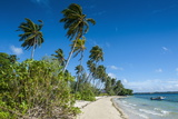 Palm Fringed White Sand Beach on an Islet of Vavau, Vavau Islands, Tonga, South Pacific, Pacific Photographic Print by Michael Runkel