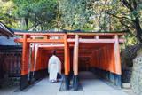 Torii Gate at Fushimi Inari Jinja, Shinto Shrine, Kyoto, Honshu, Japan, Asia Photographic Print by Christian Kober