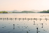 West Lake at Dusk, Hangzhou, Zhejiang, China, Asia Photographic Print by Andreas Brandl