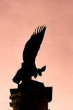 Eagle of the Monarchy, Buda Castle Hill, Budapest, Hungary, Europe Photographic Print by Karl Thomas
