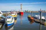 Fishing Boats in the Harbour of Cuxhaven, Lower Saxony, Germany, Europe Lámina fotográfica por Michael Runkel