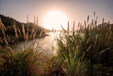 Reeds and Setting Sun at the Shore of Qiandao Lake in Zhejiang Province, China, Asia Photographic Print by Andreas Brandl