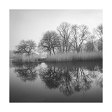 Prospect Park Lake In Morning - Brooklyn Landscape Photographic Print by Henri Silberman