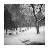 Central Park Benches - Central Park, NYC in Snow Photographic Print by Henri Silberman