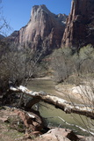 Zion Canyon National Park, Utah, United States of America, North America Photographic Print by Ethel Davies
