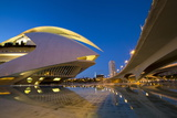 El Palau De Les Arts Reina Sofia (Opera House and Performing Arts Centre) at Night Photographic Print by Lee Frost