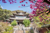 Fu Guo Temple, Five Phoenix Building (Formerly Buddhist Cloud Building) in Spring, Lijiang Photographic Print by Andreas Brandl