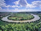 Bight of Neckar River, Mundelsheim, Baden Wurttemberg, Germany, Europe Photographic Print by Marcus Lange