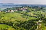 Vineyard Countryside Surrounding Kozana, Goriska Brda (Gorizia Hills), Slovenia, Europe Photographic Print by Matthew Williams-Ellis