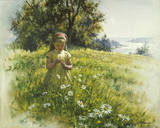 Daisy Meadow Giclee Print by Stephen Pearson