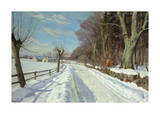 A Village in Winter Premium Giclee Print by Harald Julius Niels Pryn
