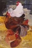 Roosting Hens Giclee Print by Anuk Naumann