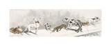 Dirty Dogs Of Paris I Premium Giclee Print by Boris O'Klein