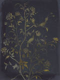 Jardin Chinois II Giclee Print by Ken Hurd