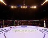 UFC Fight Night: Matthews v Rocha Photo by Josh Hedges/Zuffa LLC