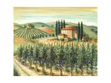 Tuscan Villa and Vineyard Photographic Print by Marilyn Dunlap