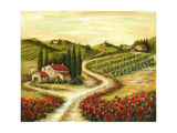 Tuscan Road With Poppies Photographic Print by Marilyn Dunlap