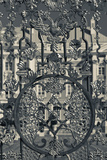 Detail of the Palace Gate, Catherine Palace, Tsarskoye Selo, St. Petersburg, Russia Photographic Print by Green Light Collection