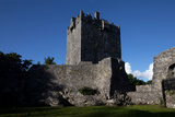 Aughnanure Castle (1490), a Late Medival Tower House on the Banks of Lough Corrib, Connemara Photographic Print by Green Light Collection