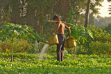 Agriculture and Gardening School in Cambodia Lámina fotográfica por Norbert Jung