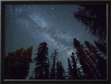 The Milky Way Shines Above the Forest in the San Juan Mountains of Southern Colorado. Framed Photographic Print by Ryan Wright