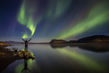 Woman Enjoying the View of the Northern Lights, at Lake Thingvellir, Iceland Photographic Print by Green Light Collection
