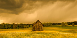 Barn in a Field of Wildflowers with Storm Clouds, Baden-Wurttemberg, Germany Photographic Print by  Panoramic Images