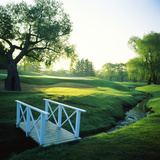 Footbridge in a Golf Course, Inverness Golf Course, Palatine, Cook County, Illinois, USA Photographic Print by Green Light Collection